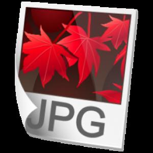 JPEG_Jan 2011